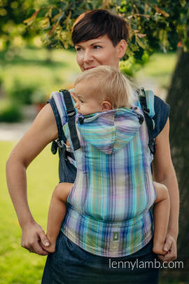 Ergonomic Carrier, Toddler Size, herringbone weave 100% cotton - wrap conversion from LITTLE HERRINGBONE PETREA - Second Generation