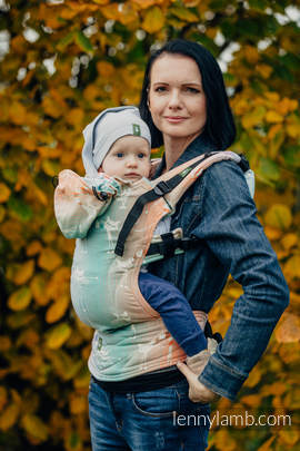 Ergonomic Carrier, Toddler Size, jacquard weave 100% cotton - wrap conversion from PLAYFUL CATS - Second Generation